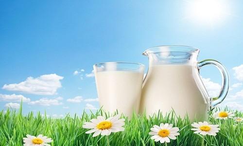 Польза коровьего молока при грудном вскармливании
