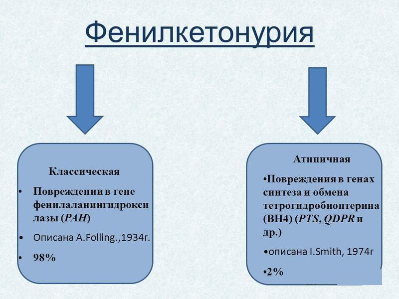 анализ крови для похудения и цены