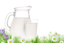 Коровье молоко для приготовления сыра в домашних условиях