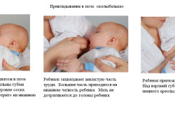 Правильное прикладывание младенца к груди