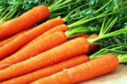 Морковь для рецепта